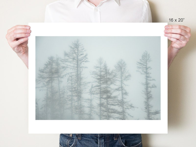 Forest photography, winter landscape woodland photograph. Misty larch trees, England. Monochromatic forest print. Small / large format sizes - tombland