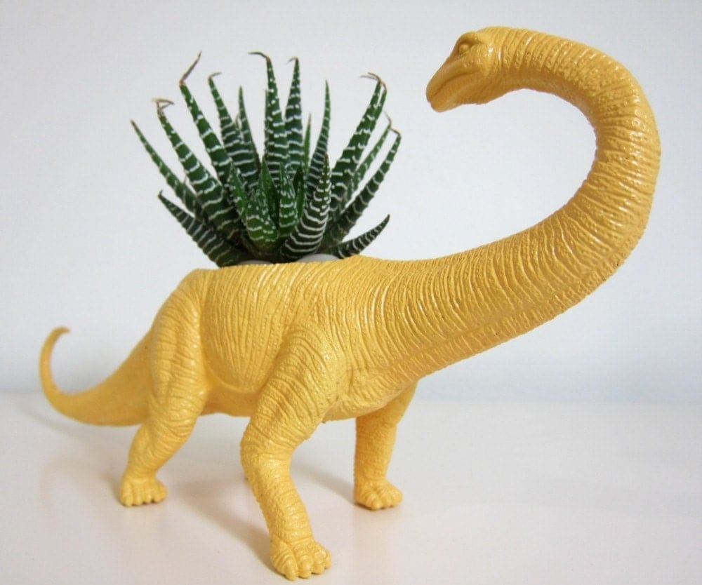 Beatrice the Apatosaurus Planter & Succulent