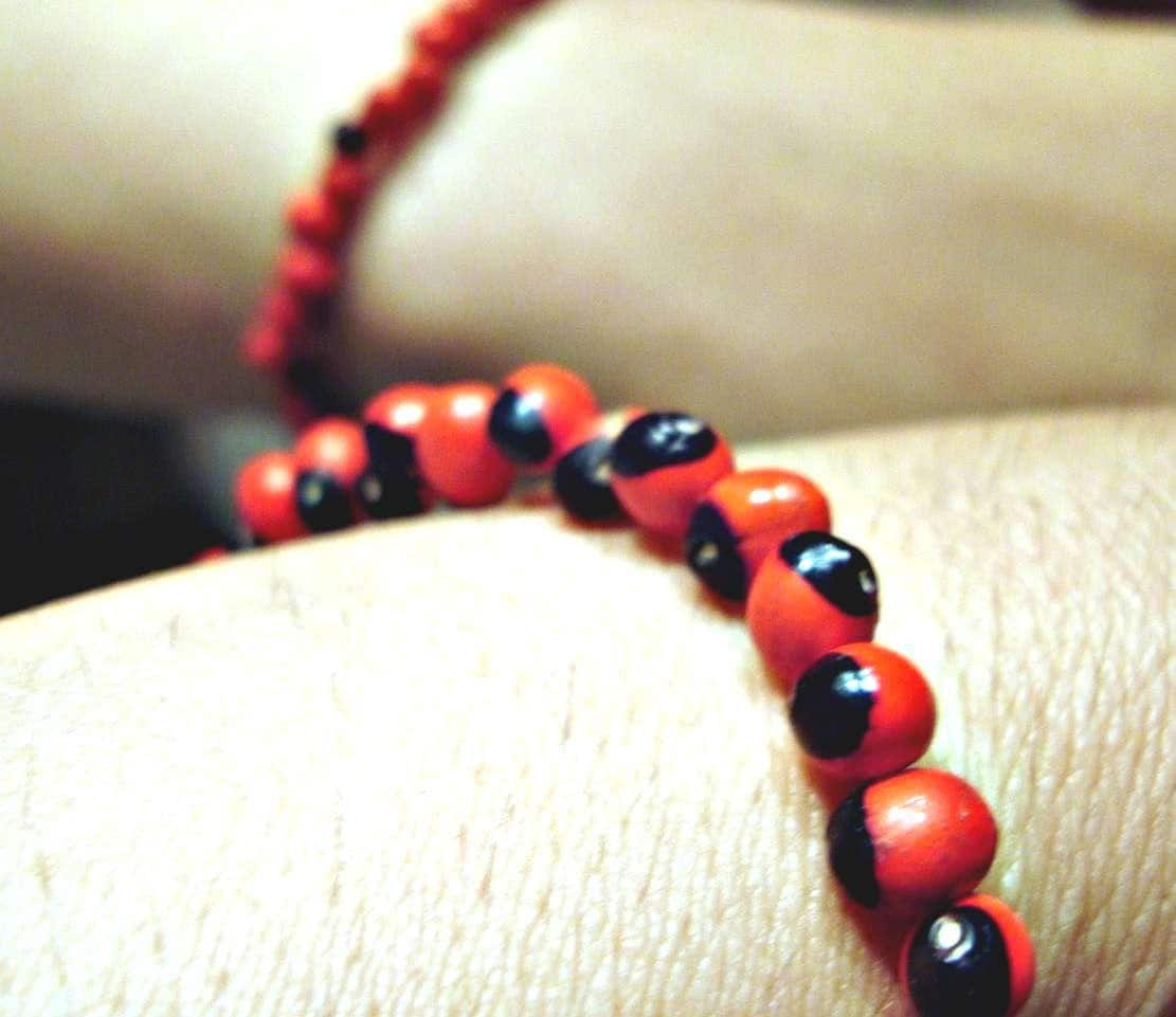Peruvian Baby Huayruro Elastic Bracelet -Good Luck- Red and Black
