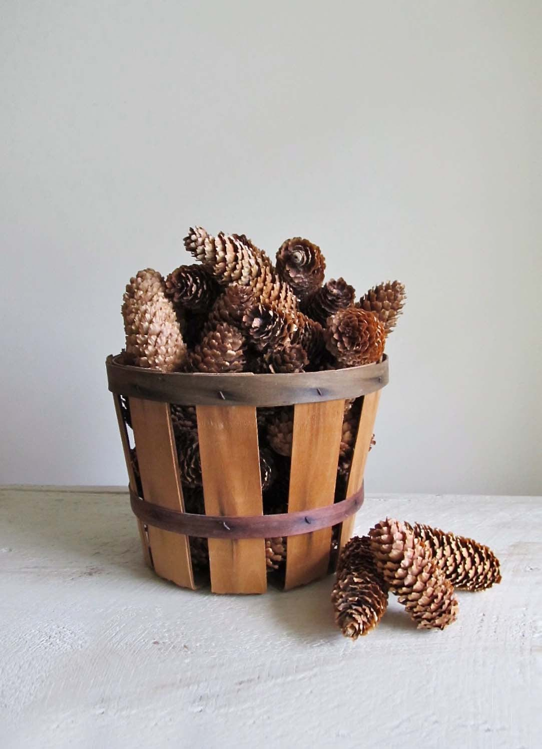 60 Natural Spruce Cones - cattales