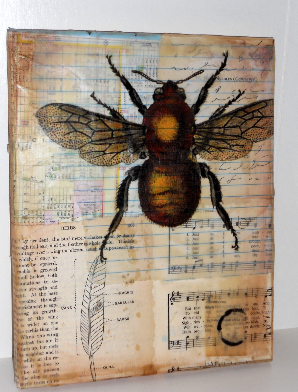 "8x10  Encaustic Beeswax and Paper Colllage on Canvas-Original OOAK Art ""The Bee and Birds"" - LYNNELARKINARTIST"