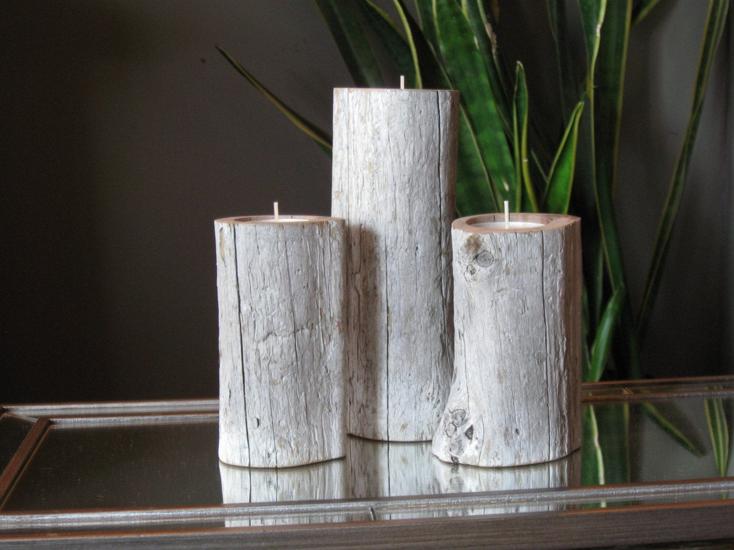 Set of 3 redwood Driftwood Candle Holders for an organic home decor