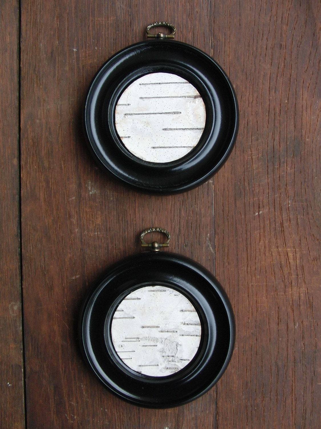 Birch bark in round black frame I