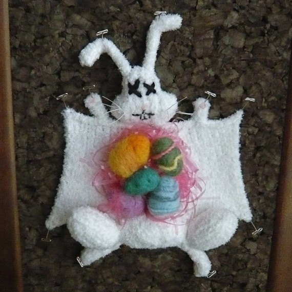 The Easter Bunny donated his body to science