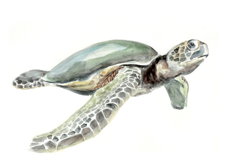 Sea Turtle Animal Watercolor Painting - Art print 8x10 - MundoMeo