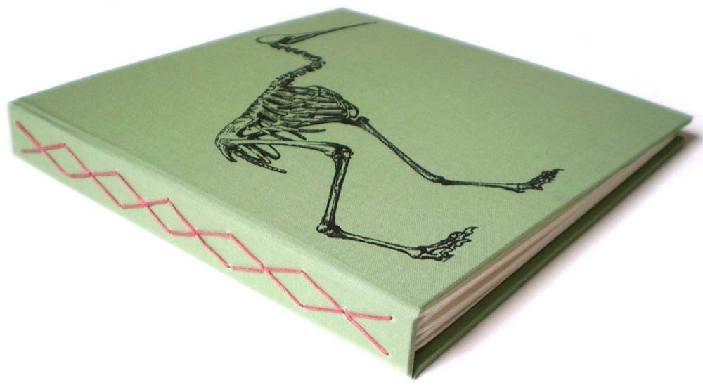 stork skeleton book