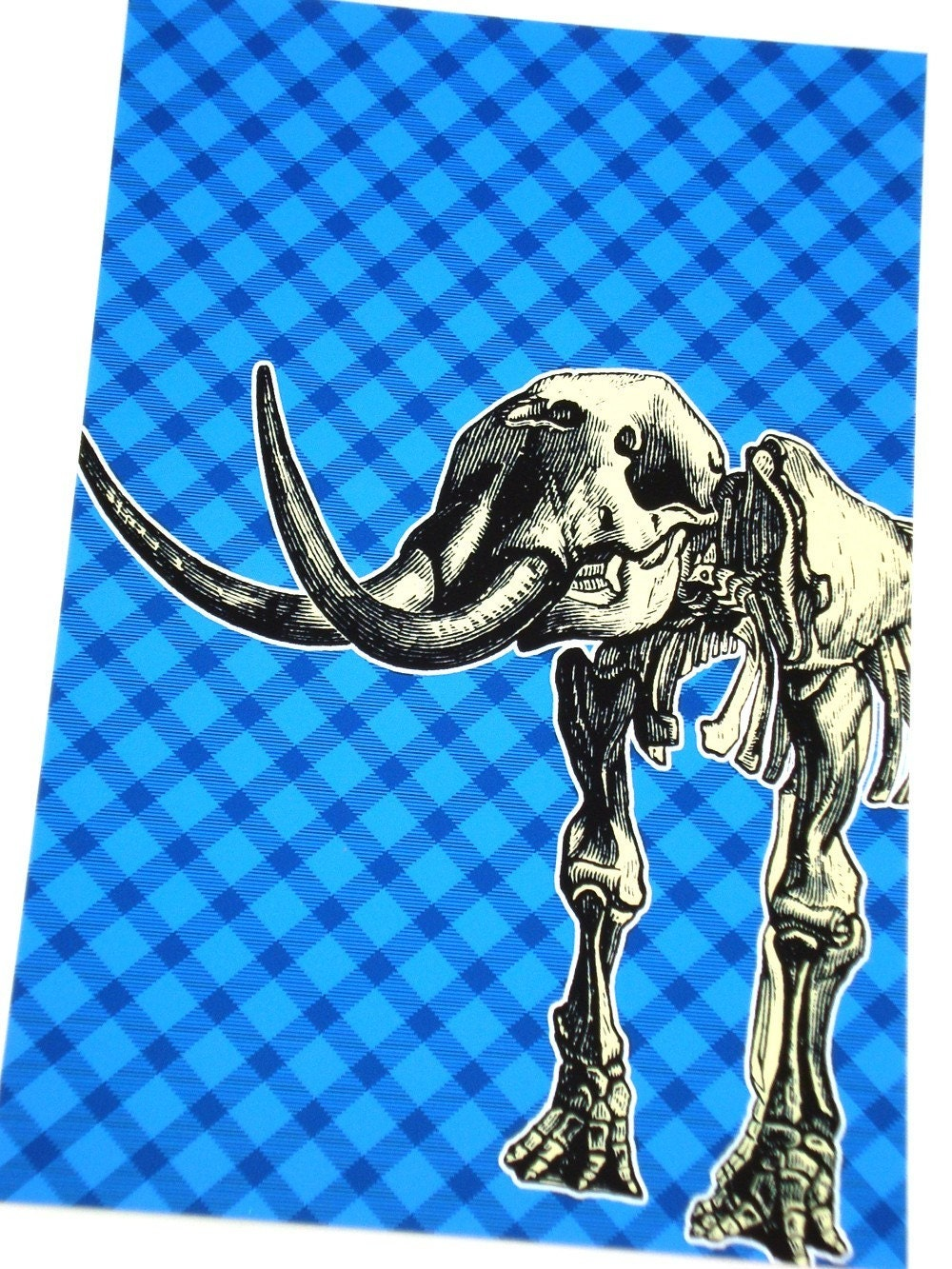 Wholly Mammoth Skeleton - 8x10 Digital Print