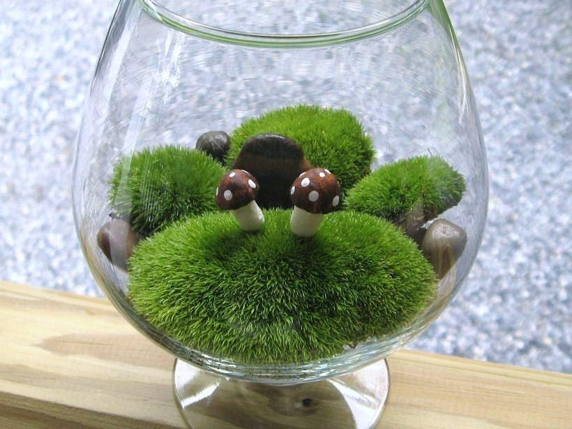 Zen Garden Terrarium   Mosses and Rocks  Soothing Garden With Candle