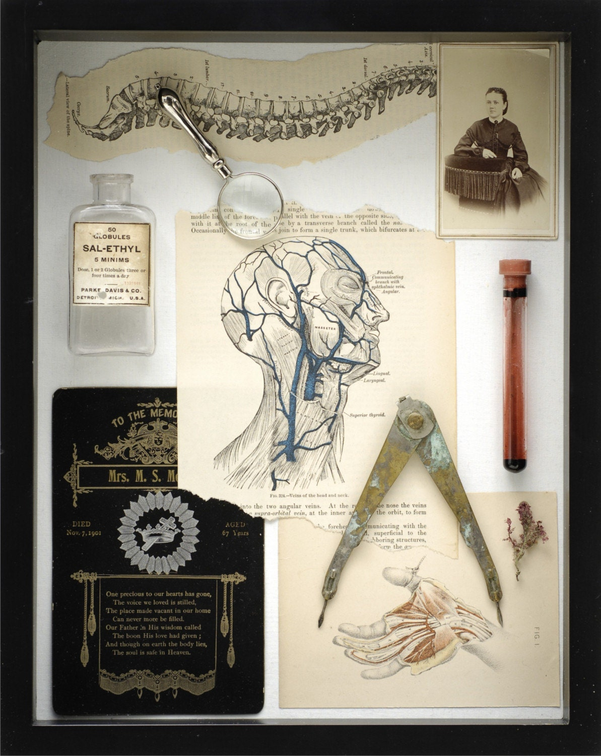 Morbid Anatomy Greeting Card - 'Mechanics III Lost'