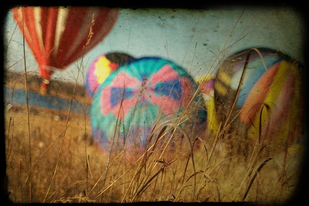 Hot Air Balloons 8x12 Orginal Photograph