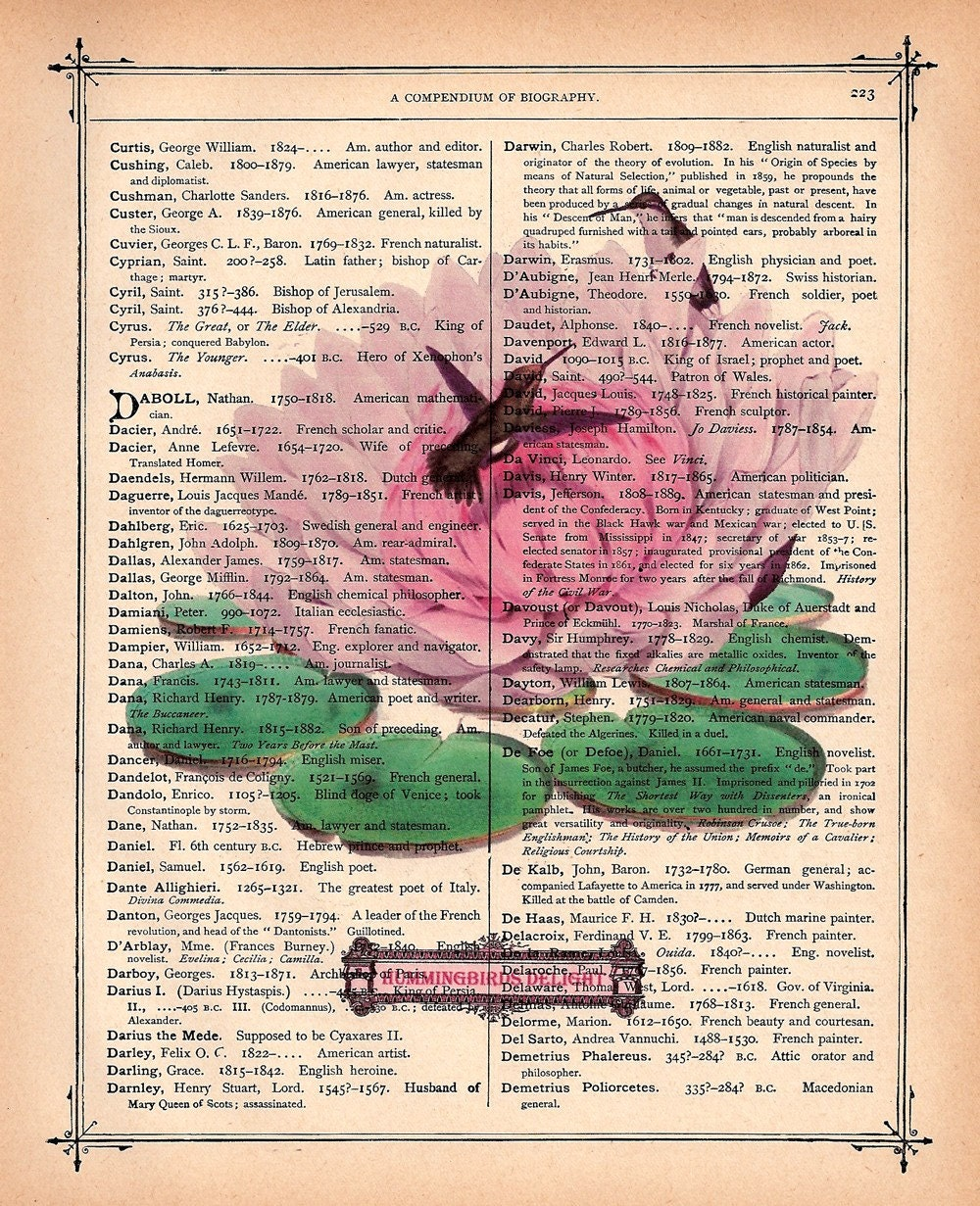 HUMMINGBIRD LILY PAD PRINT on a Vintage 1890 Book Page FREE SHIPPING WORLDWIDE