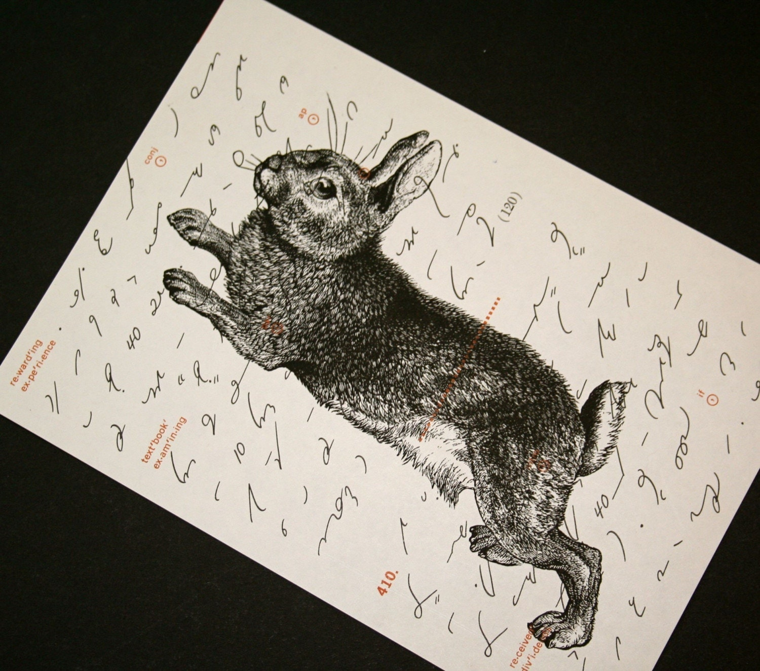 Leaping Rabbit on Shorthand Text - 5 x 7