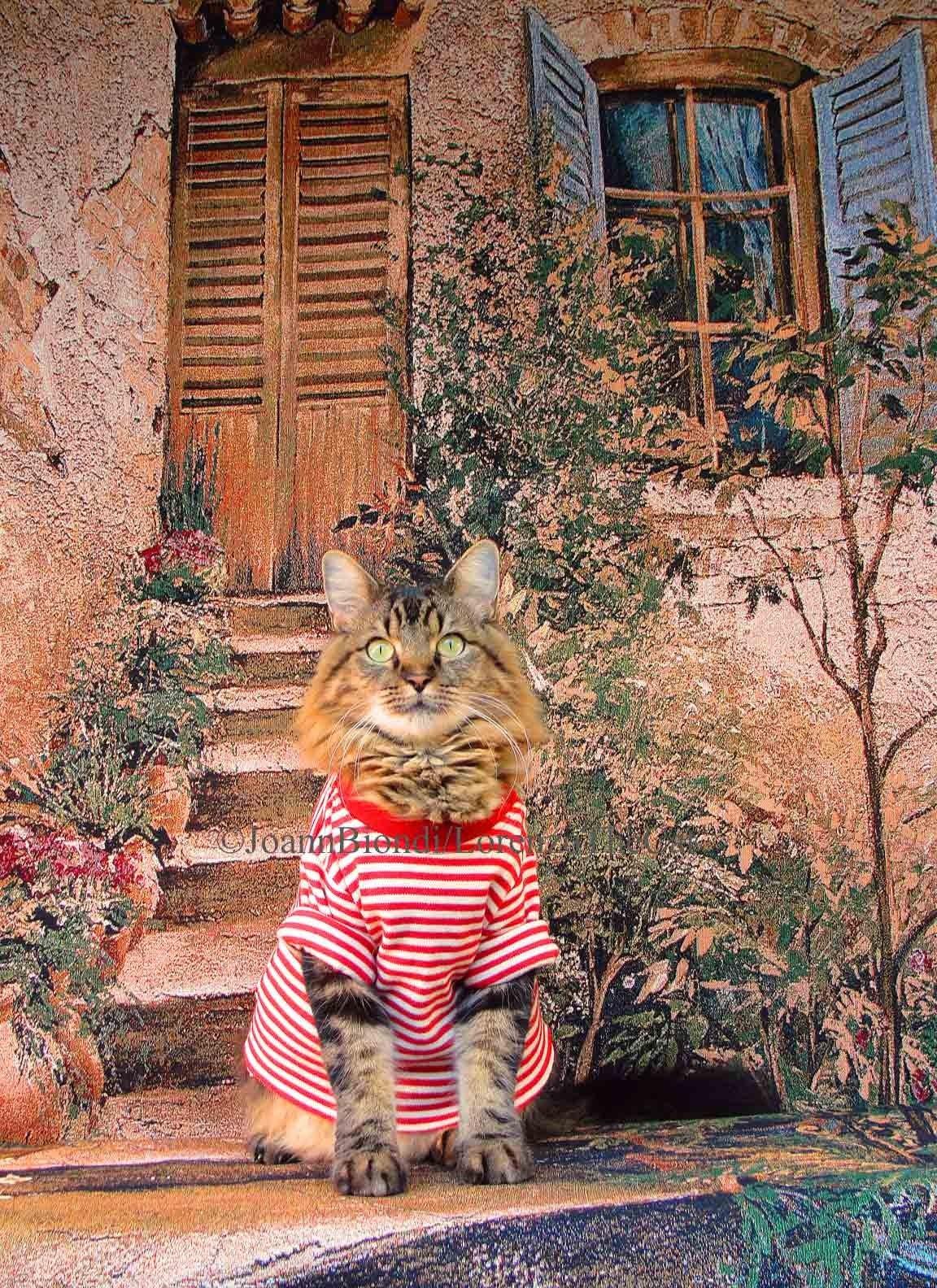 Tuscany 5 x 7 print