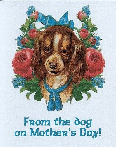 From the Dog on Mother's Day greeting card