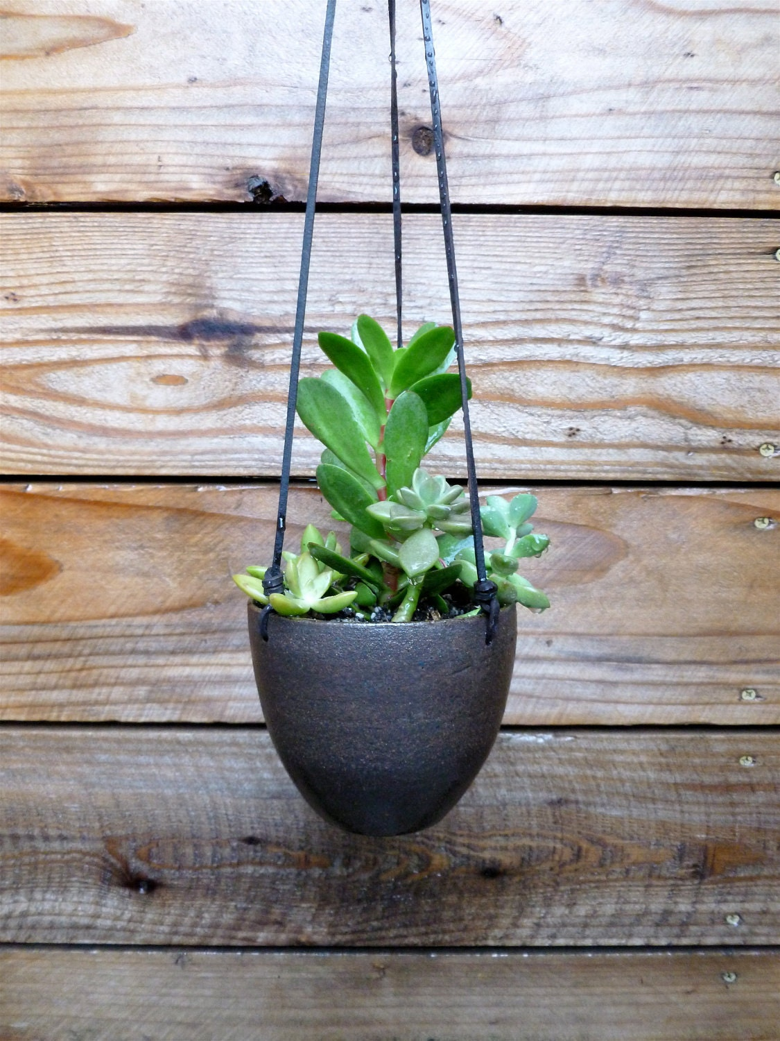 Modern Earthy Ceramic Hanging Planter With Leather By