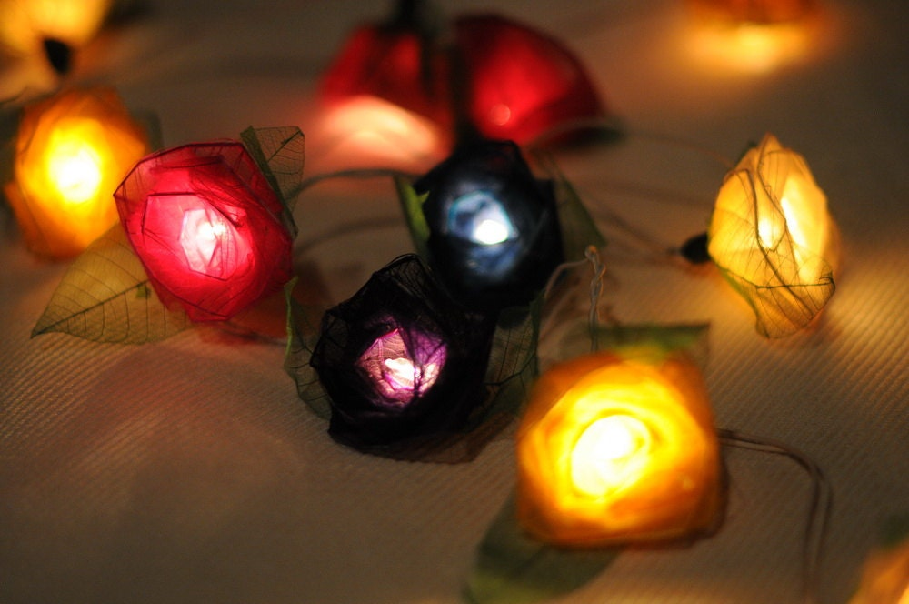 Indoor Rose String Lights : Mix beautiful color Roses flower string light by cottonlight