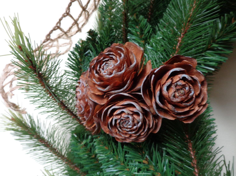 杉树开花是玫瑰的样子吗?这是个什么结构?