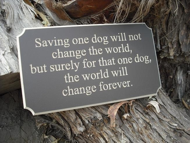 Saving one dog will not change the world, but surely for that one dog, the world will change forever - meaningful ENGRAVED wood sign for any dog lover