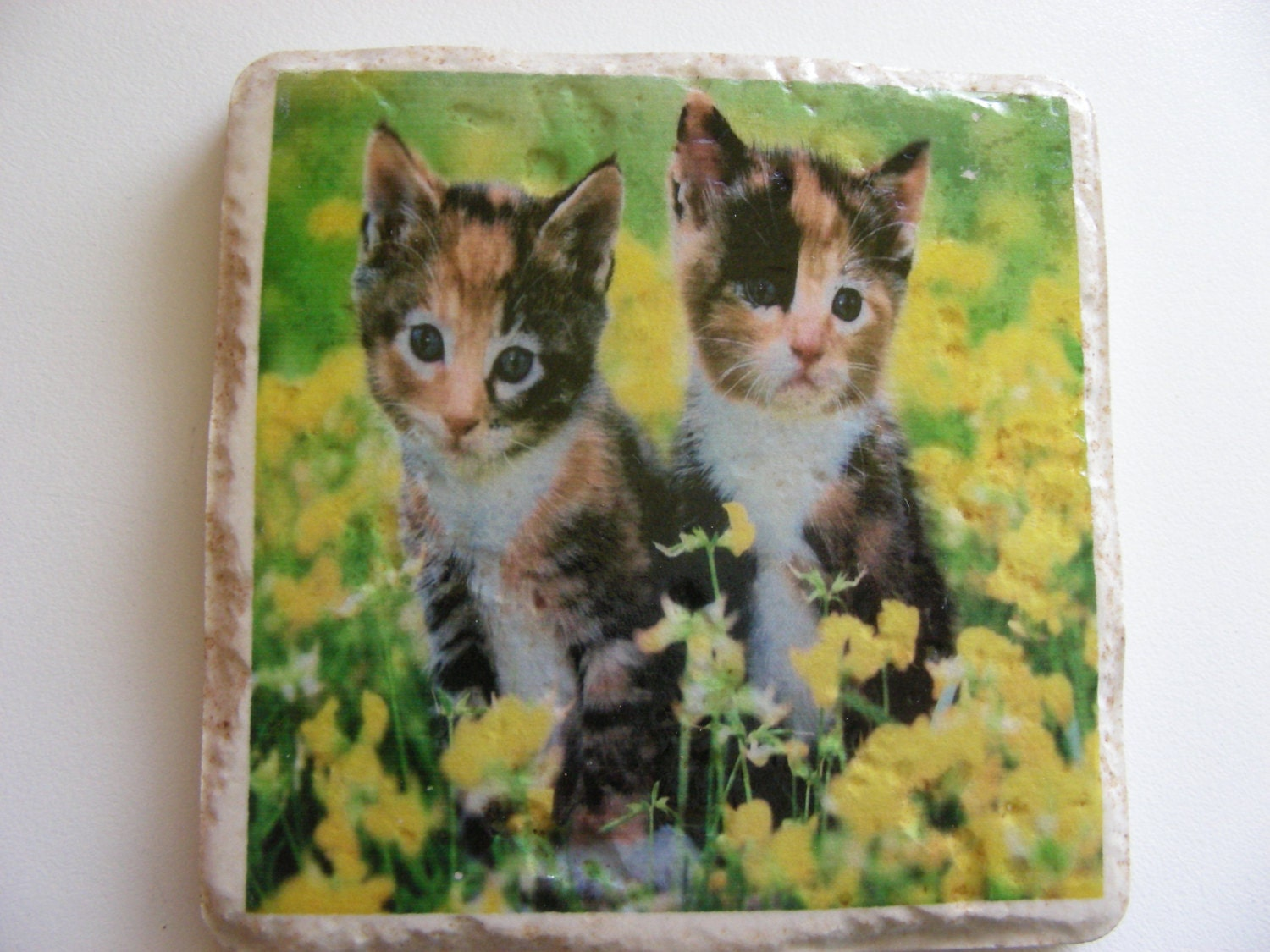 Cat Ceramic Tile Coasters