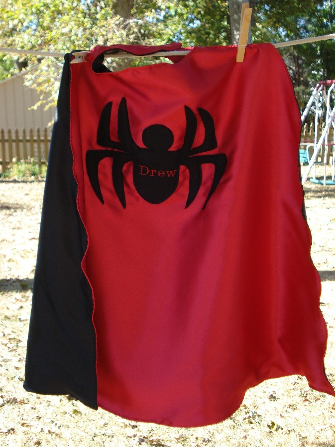 Custom Embroidered Spider Cape