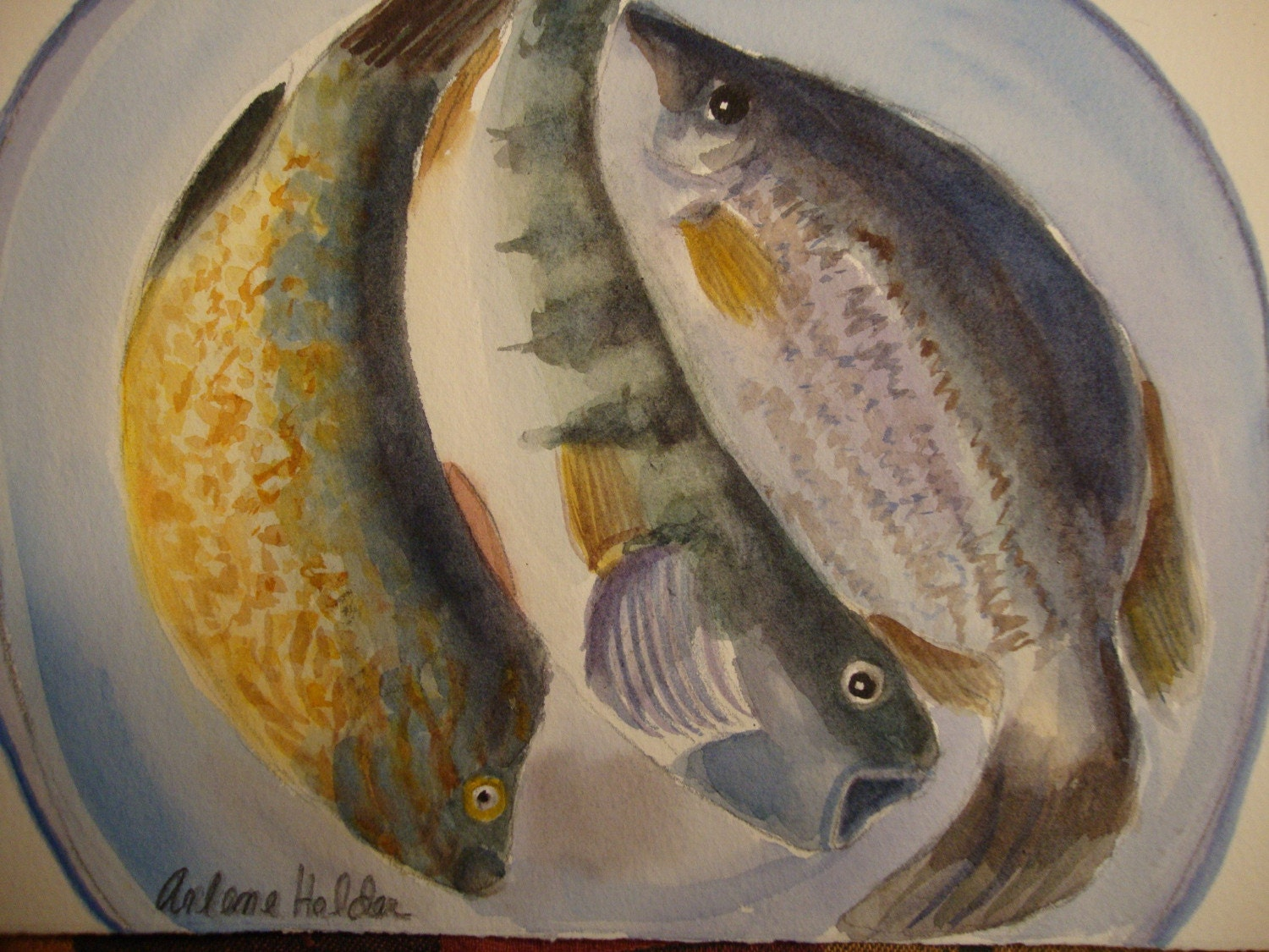 TODAY'S CATCH original Fish Watercolor  by ArleneFaye