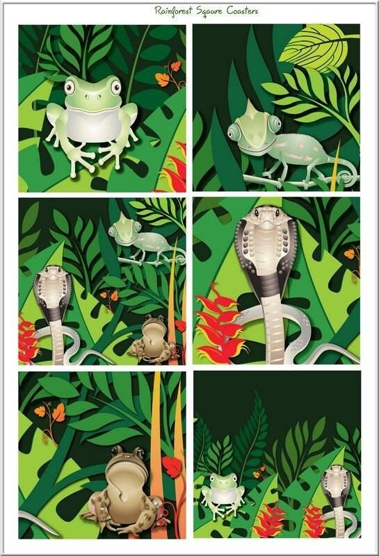 animals in rainforest. amazon rainforest animals
