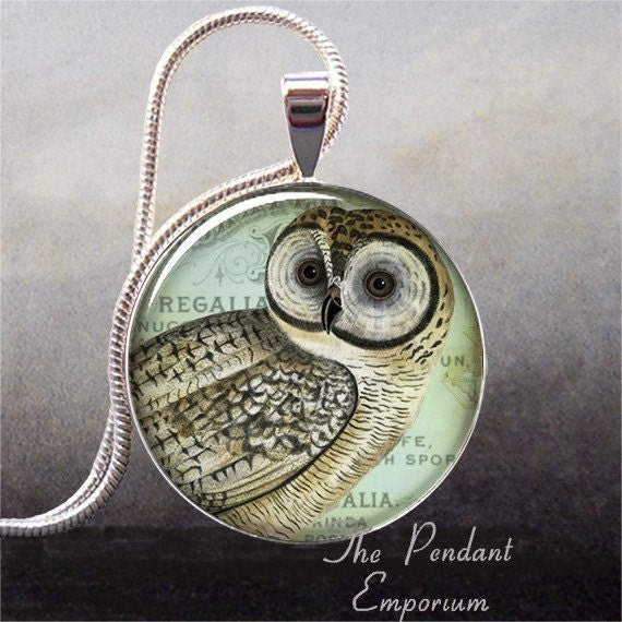 Owl Collage art pendant (118)