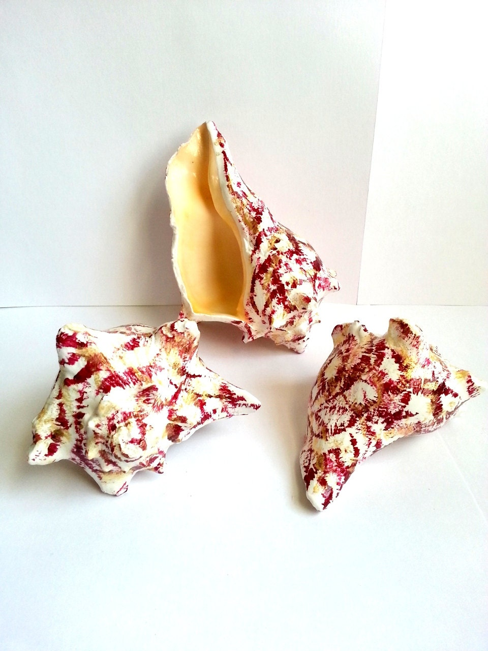 Hand painted conch shells, red coastal home decor, beach home accents - beachseacrafts