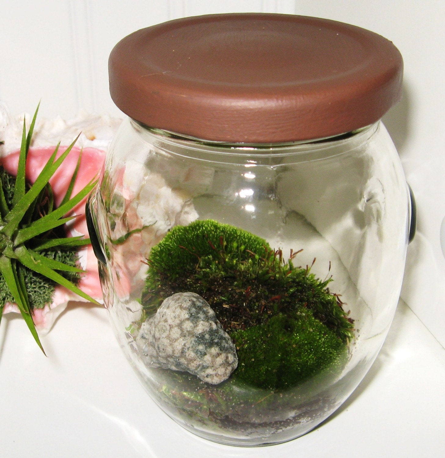 il fullxfull.55817299 Etsy Pick: Moss Terrariums