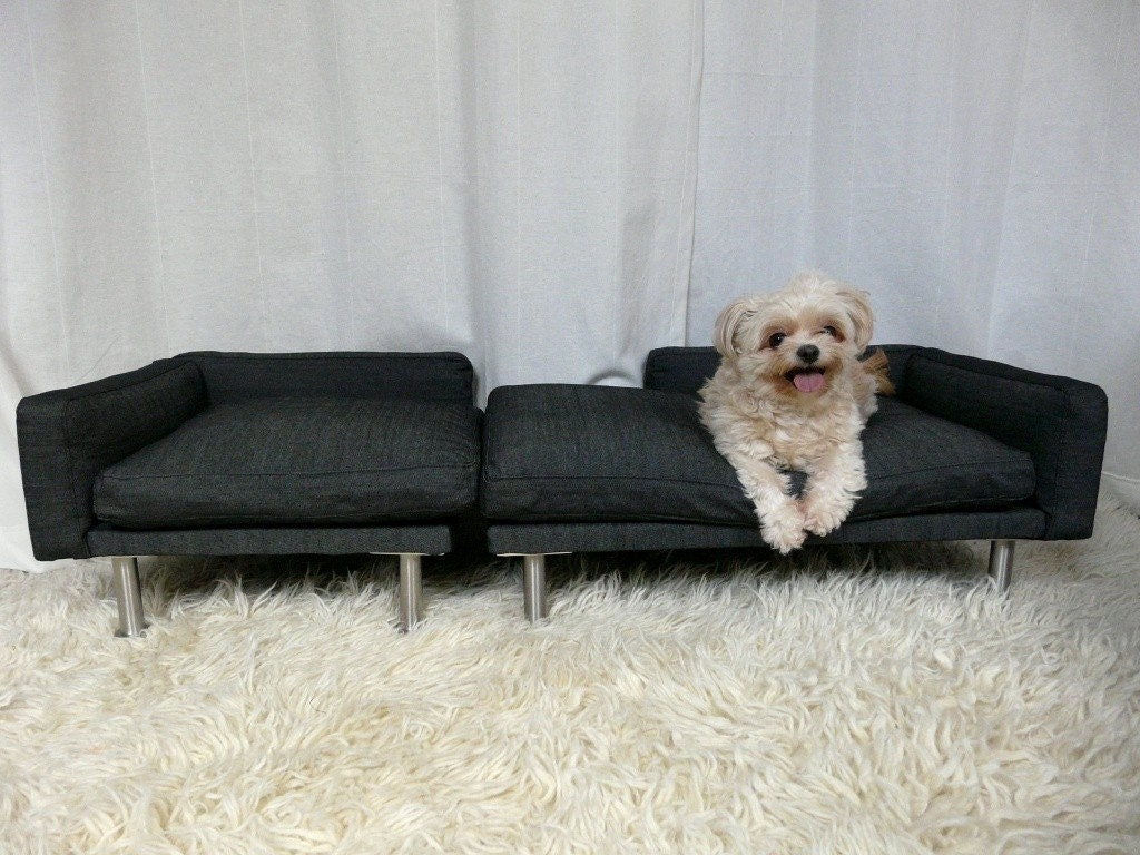 Modern pet bed, sofa and chaise sectional.