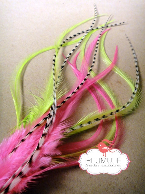 Neon Party / 6 PCS / Feather Hair Extensions / Rooster Saddle