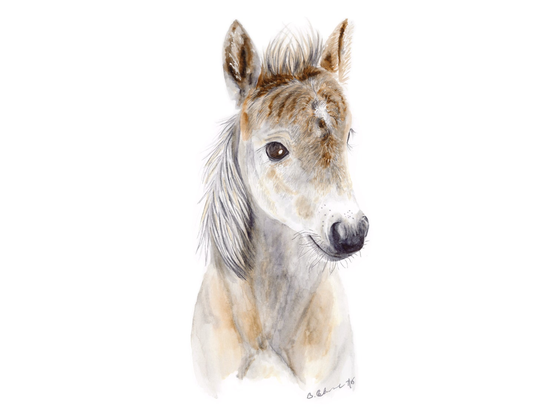 Animal Art For Your Nursery