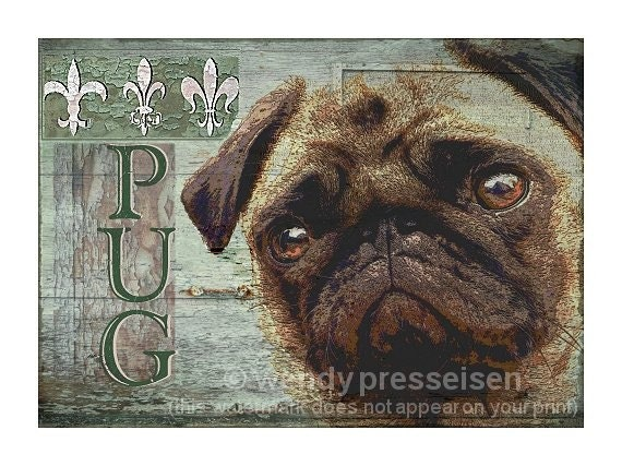 PUG DOG PRINT Modern Grunge Art  BULLDOG POSTER Puggy CUTE FUN Signed Fleur De lis