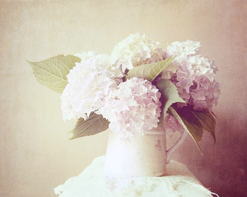 Romantic Flower Photograph - dreamy pink soft cream white pastel vase bedroom decor hydrangeas 8x10 mothers day for her - FirstLightPhoto
