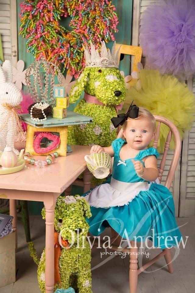 Items similar to ALICE IN WONDERLAND dress baby 1st