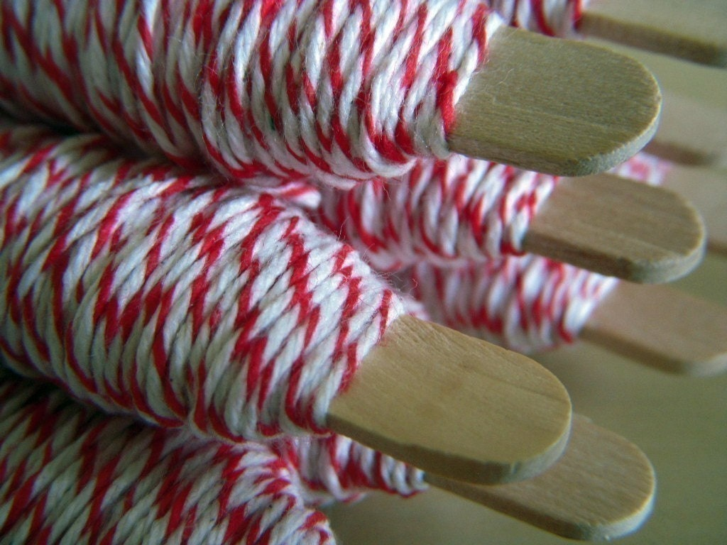 25 yds Peppermint Bakers Twine
