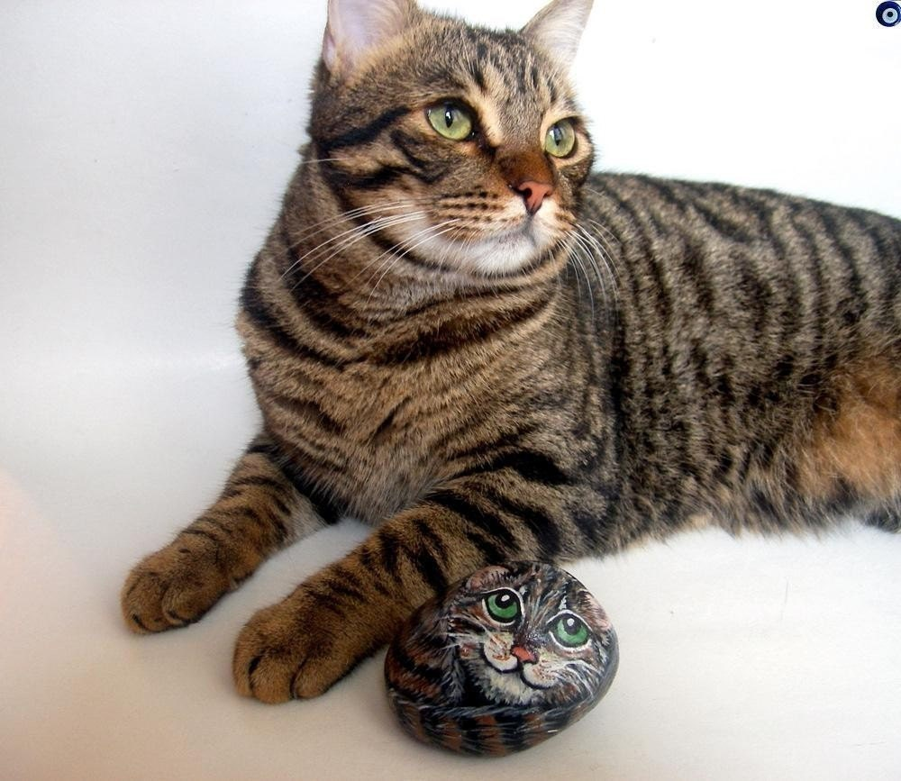 Your Pets 3D Stone Painting - MADE TO ORDER - Personalized Custom Painted Rock Pets