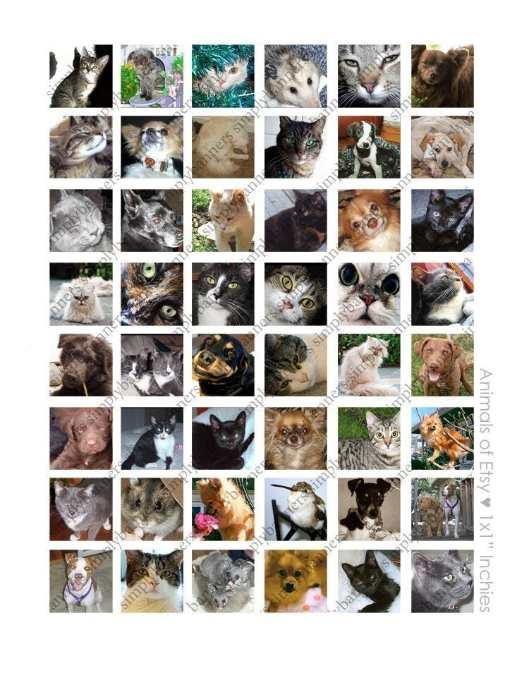 Animals of Etsy Charity Donation - Digital Collage Sheet Scrabble Glass Pendants 1x1 Inchies
