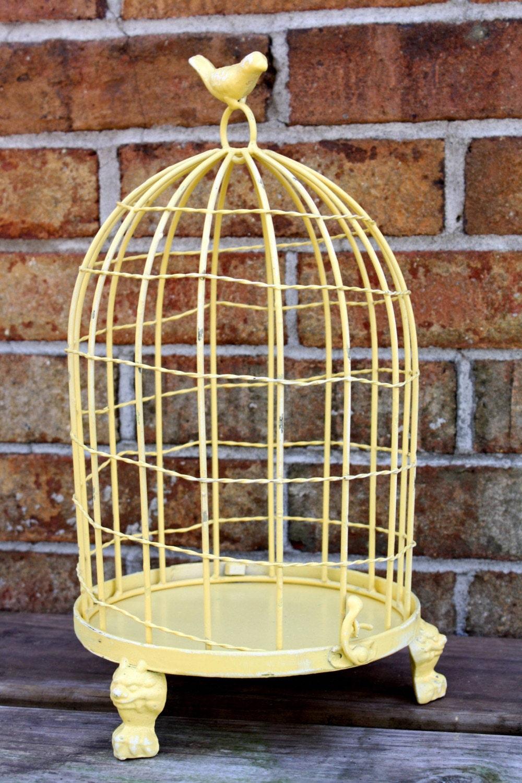 Lemony Yellow Bird Cage