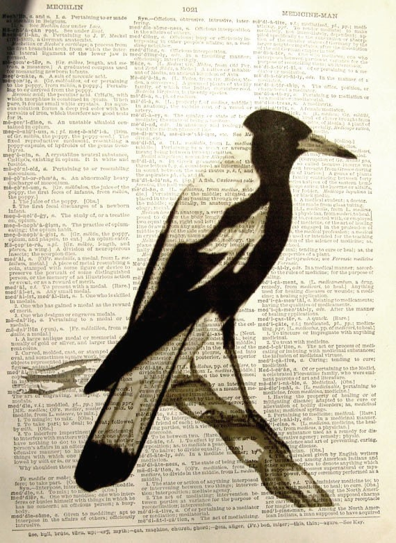Mockingbird Vintage Print,  printed on an old Dictionary Page