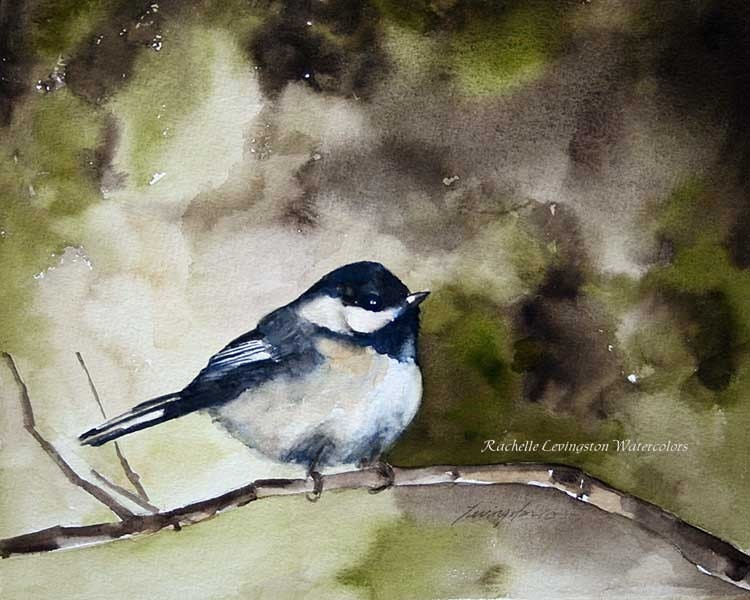 Buy One, GET one Bogo SALE Black Capped Chickadee Archival Print of original watercolor painting  8 x 10 us west utah cyber monday spring kelly sage greens branch green rustic vintage feel inspired perching rich tones