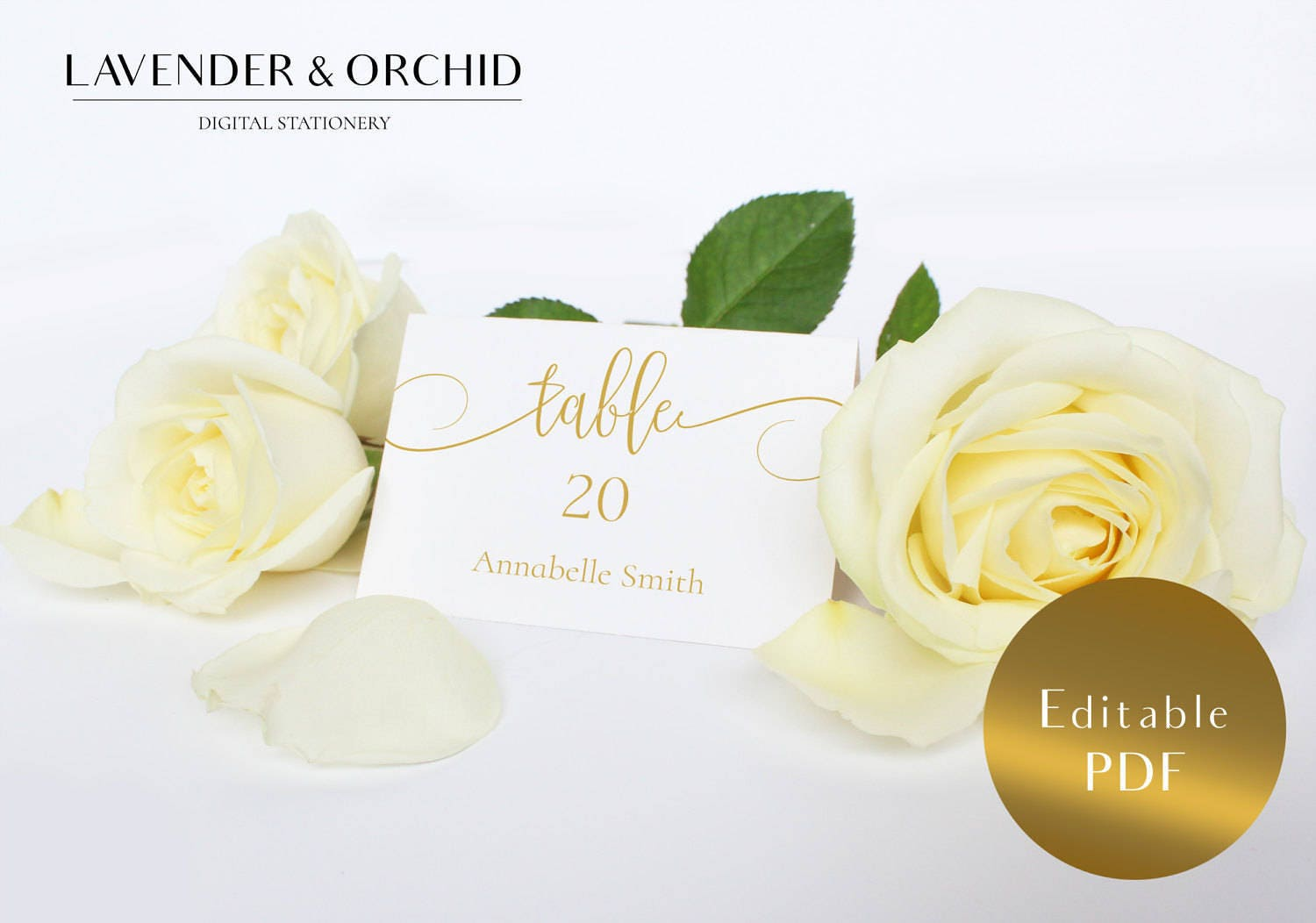 Place cards printable  Wedding place cards  Place cards Name place cards  Instant download Escort cards Table card Editable cards