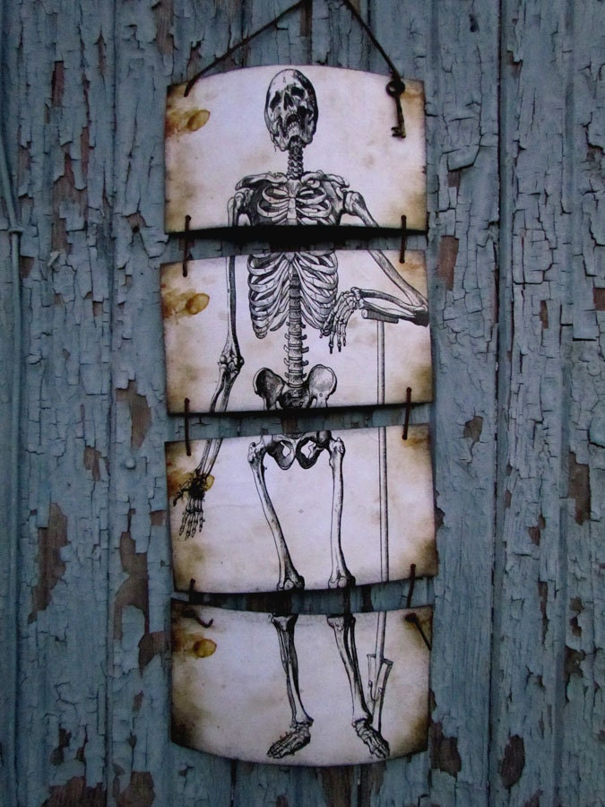 Halloween Skeleton Banner / Sign - Vintage Science Anatomy Wall Hanging - Skeleton Banner