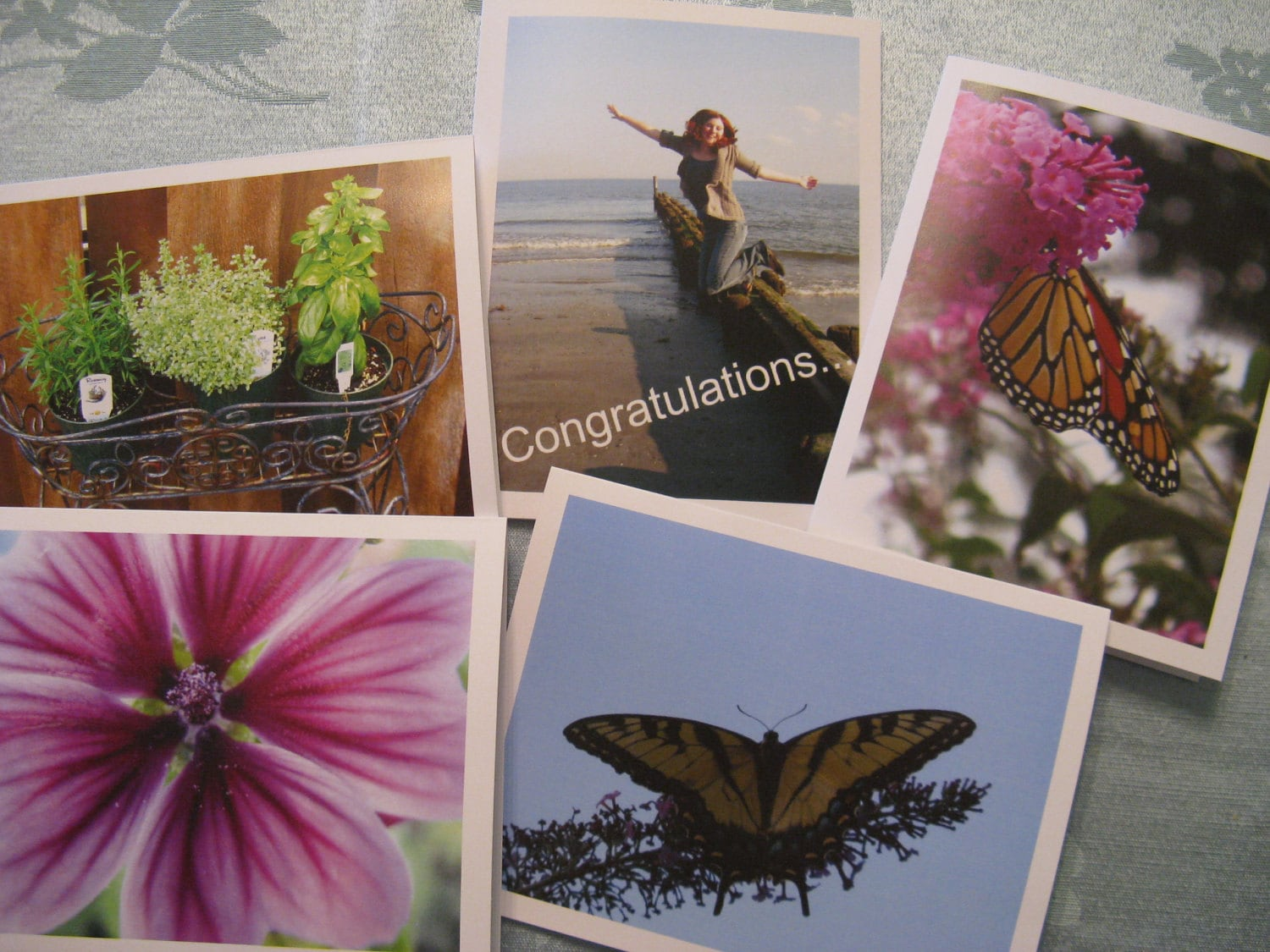 Photo Note Cards  Pack of Five Assorted Blank Cards - 4 x 5.5 inches