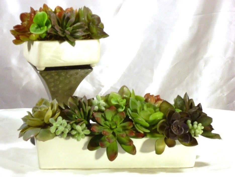 Succulent Garden Set for This Seasons Bride