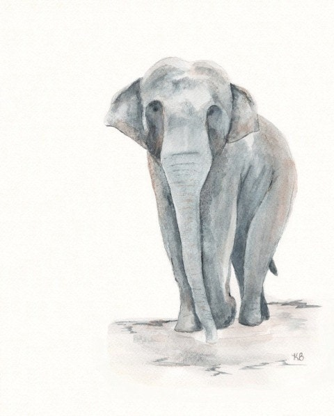 Sweet Tara Grey Asian Elephant  Watercolor Print - kellybermudez