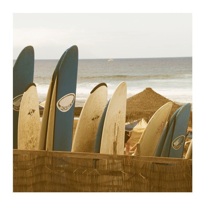 Everybodies going surfing ... - 8x8 original fine art photographic print