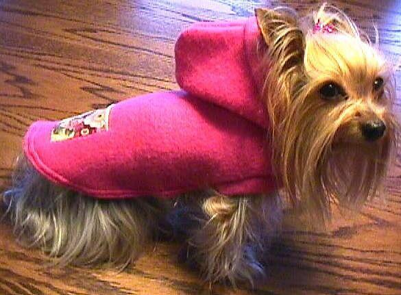 FUCHSIA Fleece Hoodie w/Ribbon Pocket Dog Coat/Jacket (xxxs-xxs-xs-s-m)