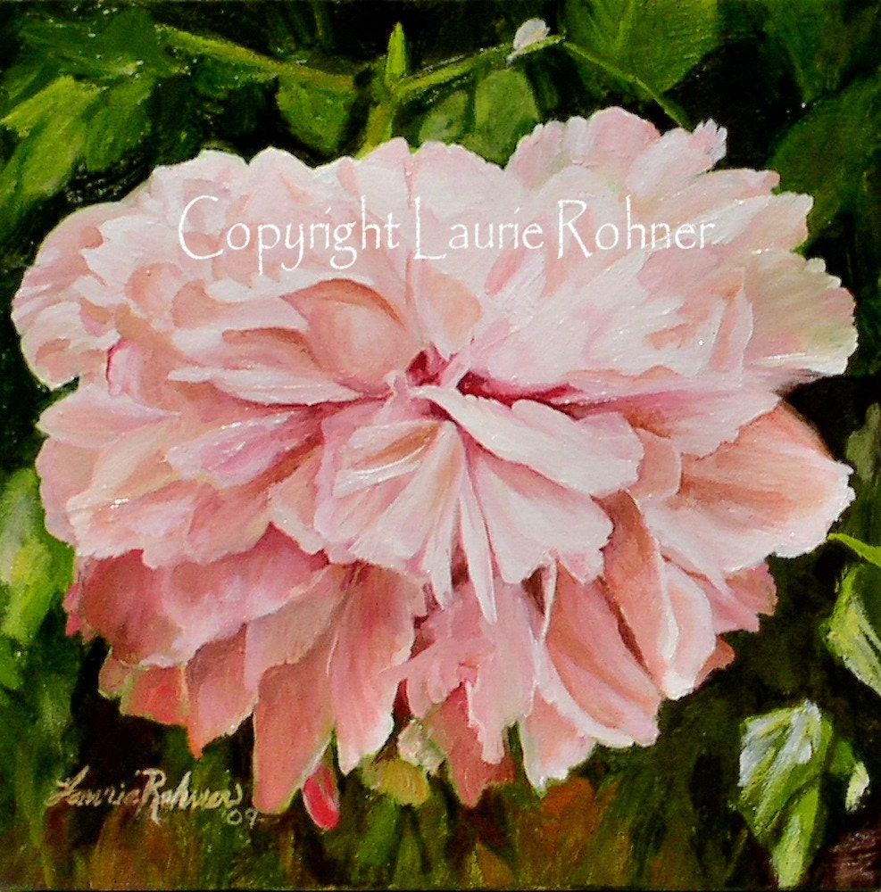 Original oil painting on canvas A Single Peony by Laurie Rohner