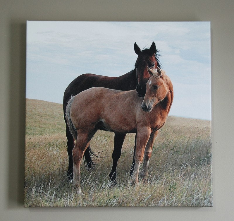 Embrace - 20x20 Gallery Canvas Wrap